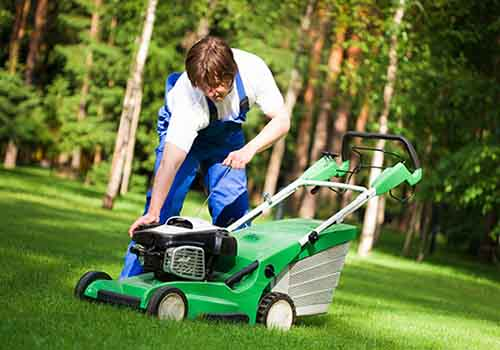 The grass is greener with these lawn mower shops